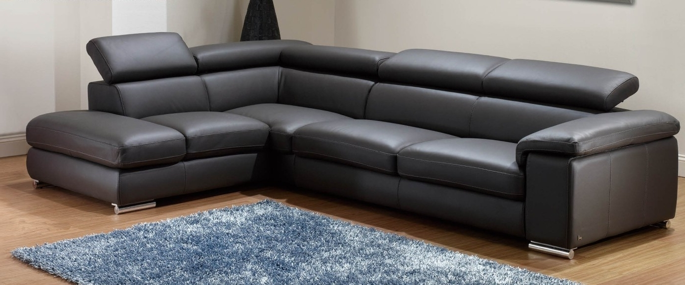 Widely Used Sectional Sofa (View 19 of 20)