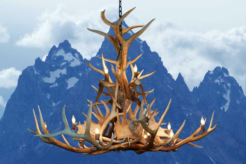 2019 Large Antler Chandelier For Antler Chandeliers – Handcrafted From Real Elk, Deer, And Moose Antler (View 13 of 20)