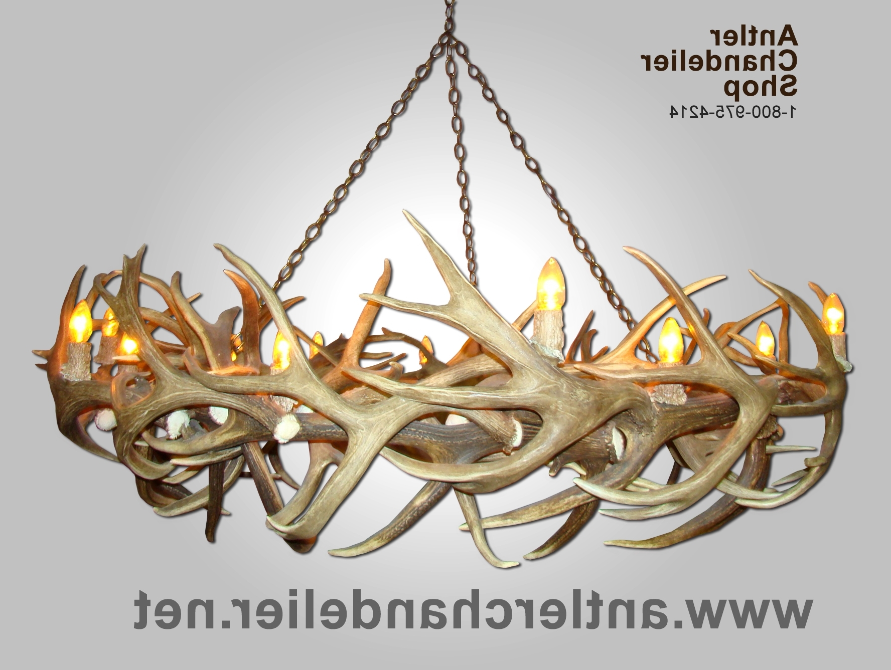 Antler Chandelier (View 14 of 20)