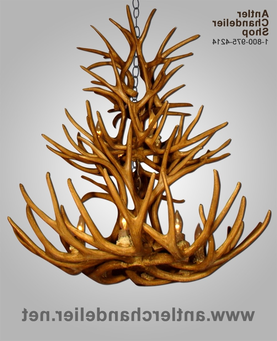 Antler Chandelier Inside Well Known Large Antler Chandelier (Gallery 17 of 20)