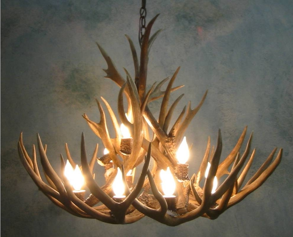 Antler Chandeliers And Lighting Pertaining To Well Known Antler Chandeliers For Sale. Real Mccoy! (Gallery 14 of 20)