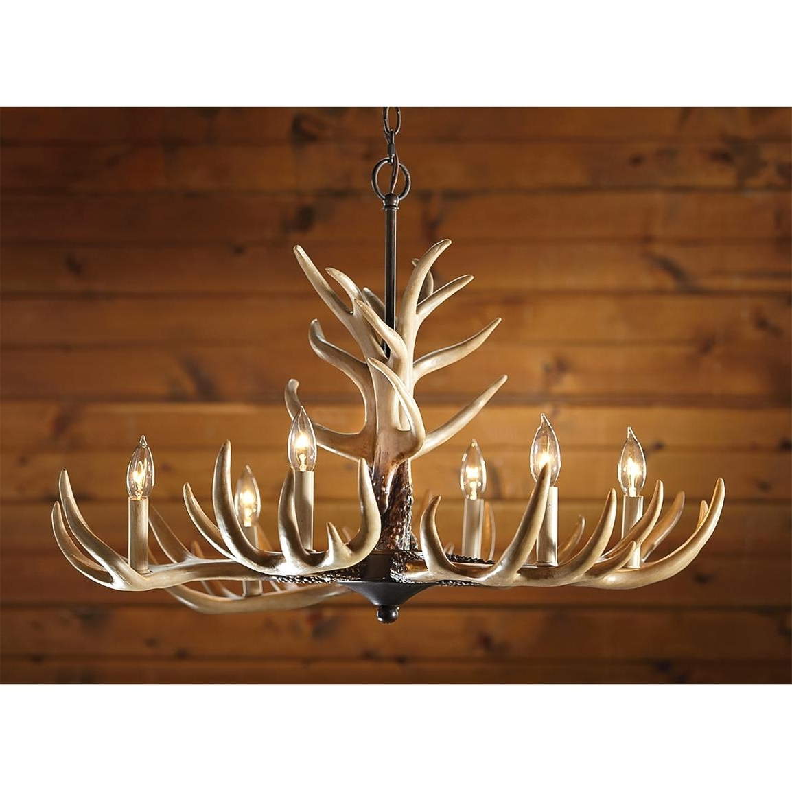 Antlers Chandeliers In Latest Castlecreek 6 Light Whitetail Antler Chandelier – 226091, Lighting (View 4 of 20)