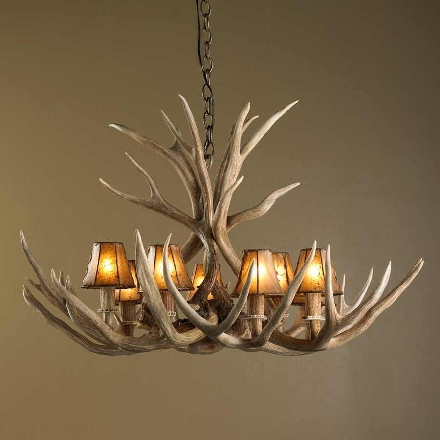 Antlers Chandeliers Throughout Well Known Decorative Deer Antler Chandelier : Where To Find A Deer Antler (View 6 of 20)