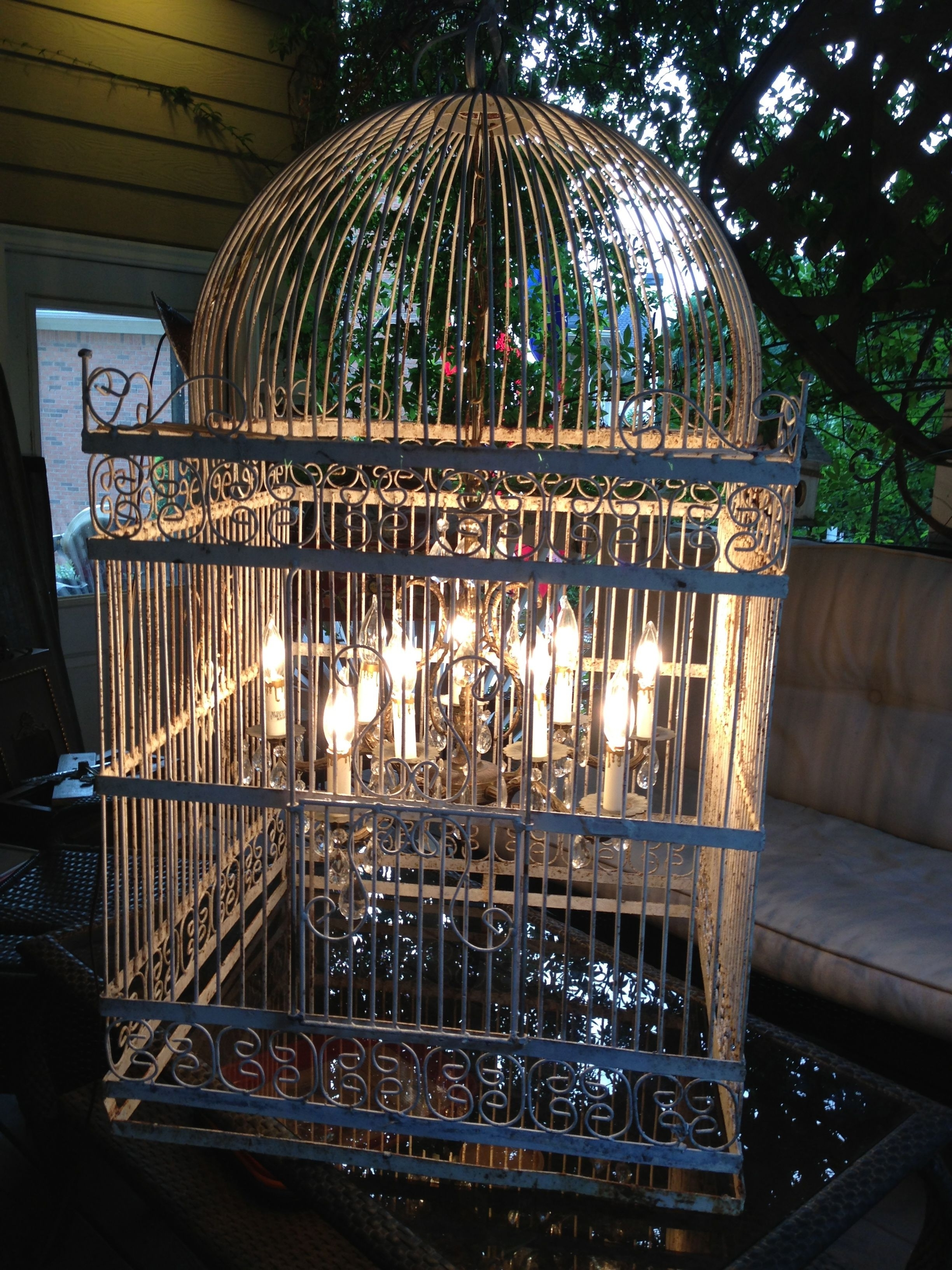 Birdcage (View 1 of 20)
