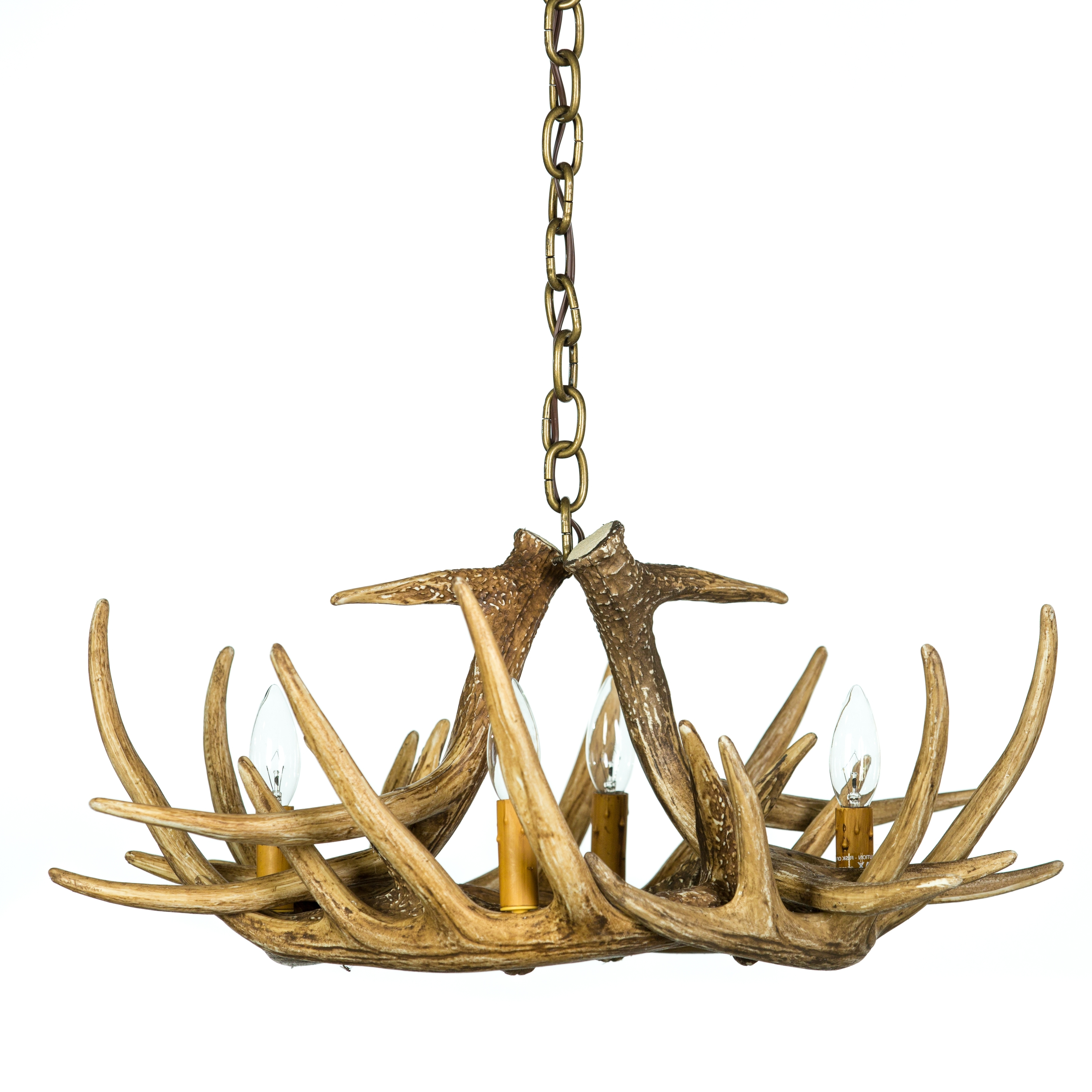 Famous Antler Chandeliers Intended For Whitetail Deer 6 Antler Chandelier (View 8 of 20)