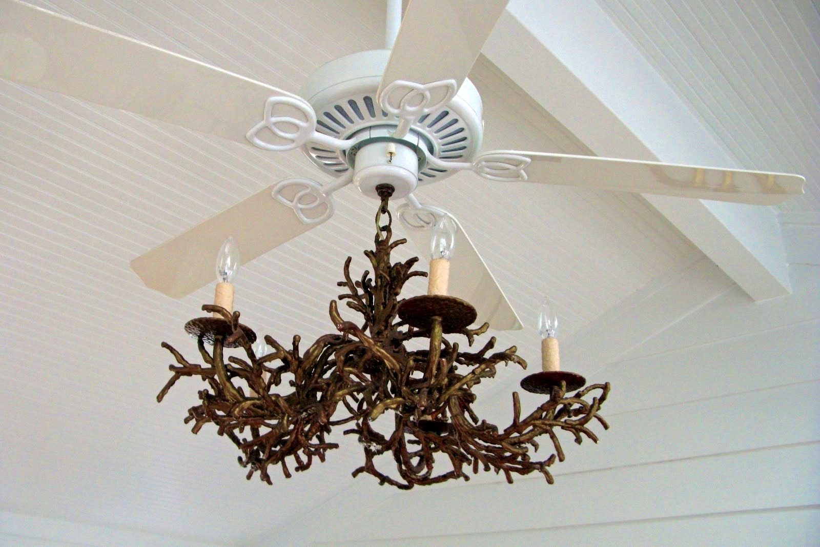 Favorite Lucinda Branch Chandelier With Regard To Fan With Chandelier India – Chandelier Designs (View 5 of 20)