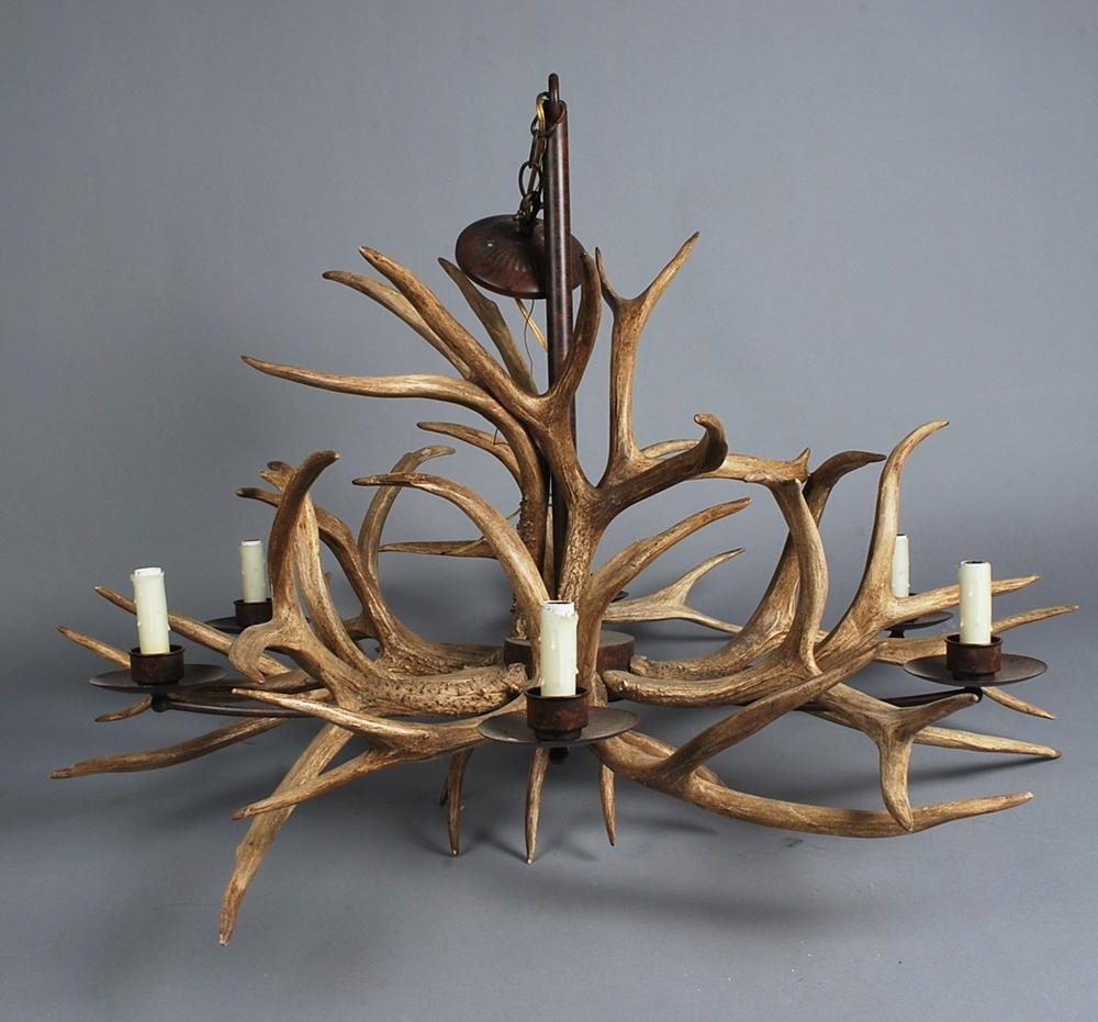 Home Design Pertaining To Antler Chandeliers And Lighting (View 15 of 20)