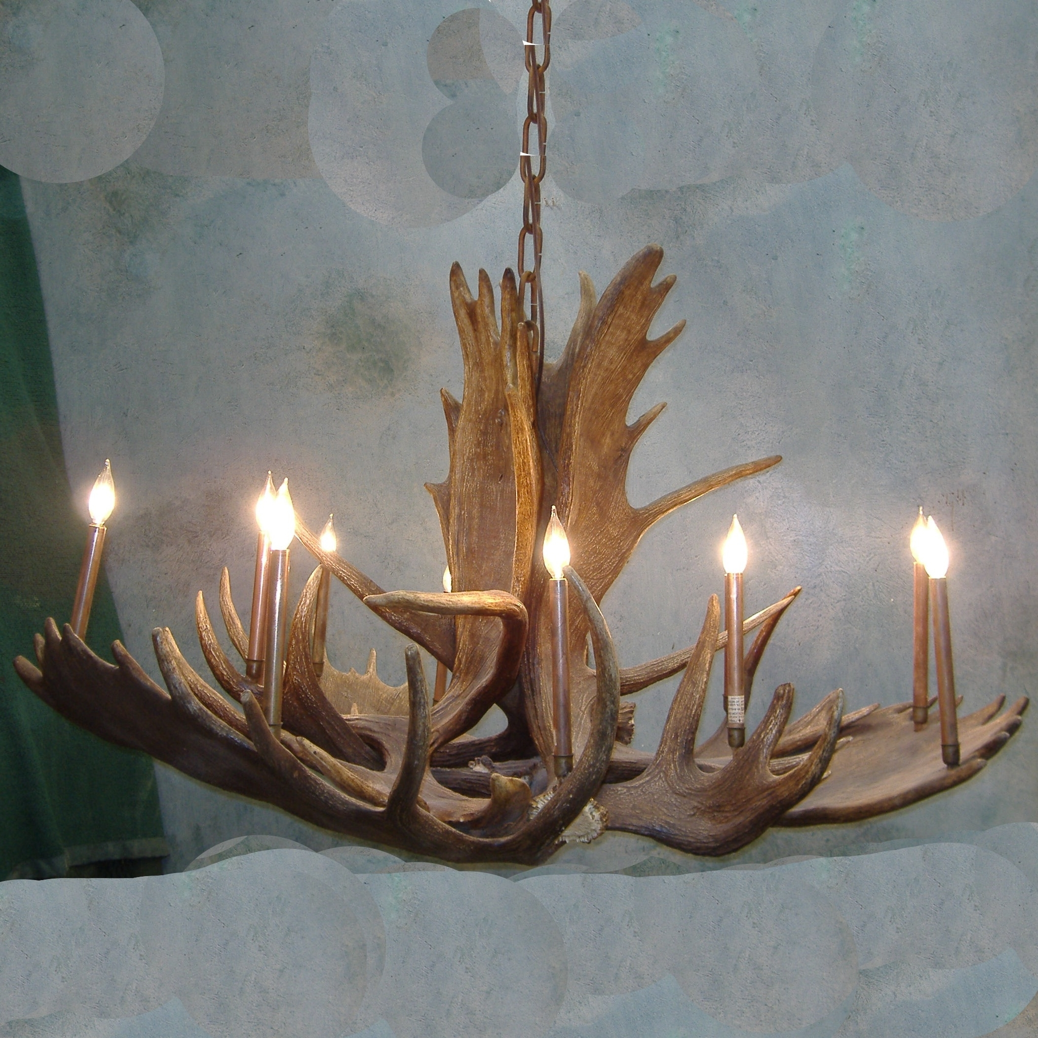 Large Antler Chandelier Inside Latest Room Moose Antler Chandelier (View 19 of 20)