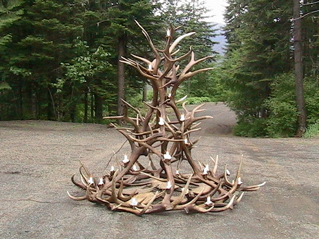 Top 20 of large antler chandelier aloadofball Image collections