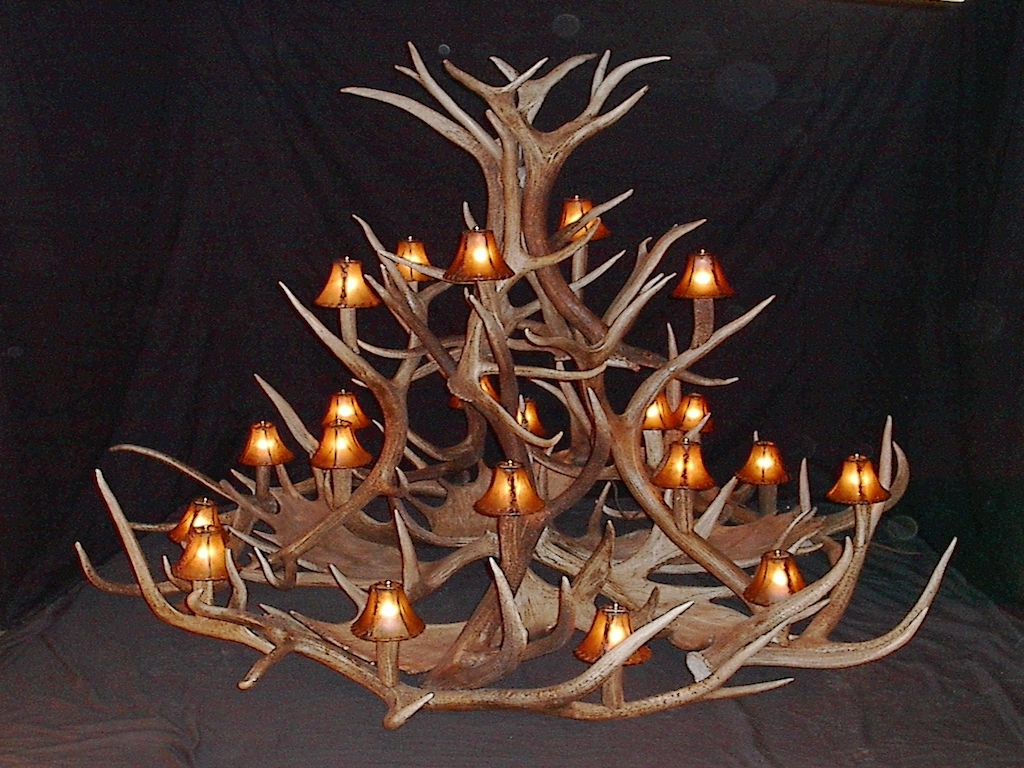 Large Antler Chandelier With Preferred Antler Furniture Antler Chandeliers Antler Lamp Deer Antler (View 3 of 20)