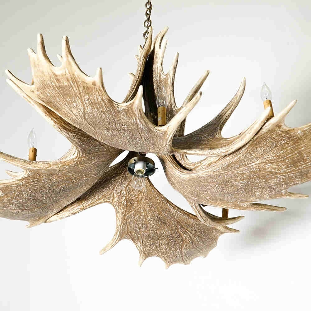 Mason Moose Antler Chandelier – Max & Livie Intended For Most Popular Antler Chandelier (View 13 of 20)
