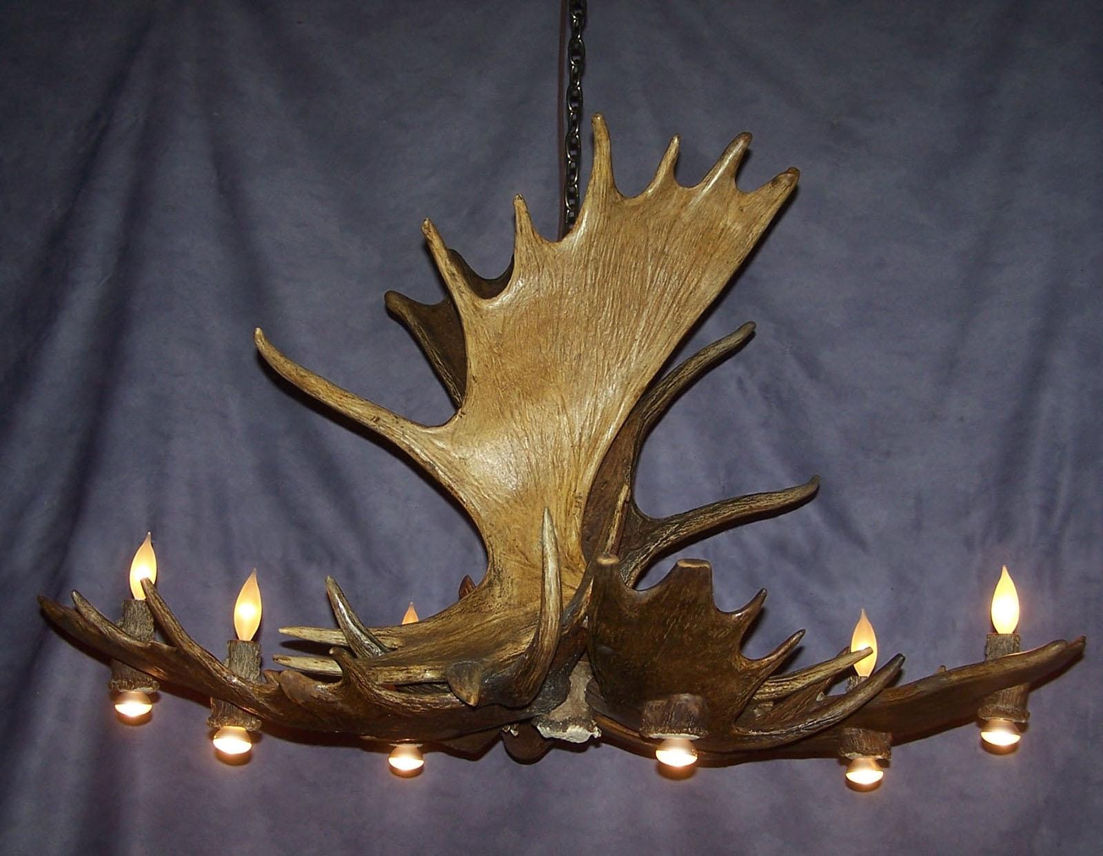 Most Recent Moose Pool Table Antler Chandelier, Rustic Deer Lodge Light, Lamps Within Modern Antler Chandelier (View 16 of 20)