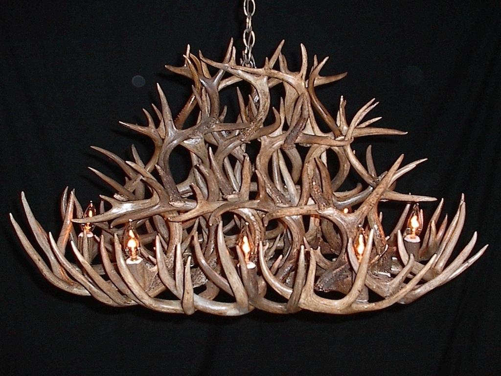 Newest Antler Furniture Antler Chandeliers Antler Lamp Deer Antler Within Antler Chandeliers (View 13 of 20)