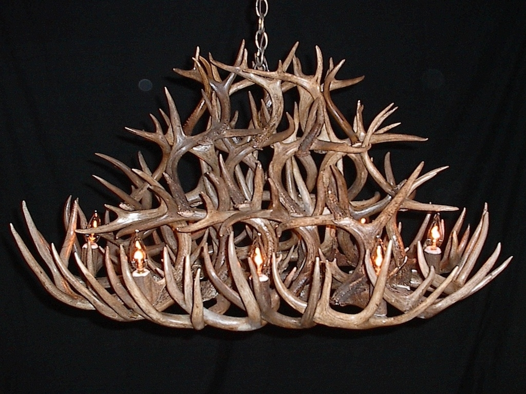 Popular Antler Chandeliers And Lighting Regarding Antler Furniture Antler Chandeliers Antler Lamp Deer Antler (View 17 of 20)