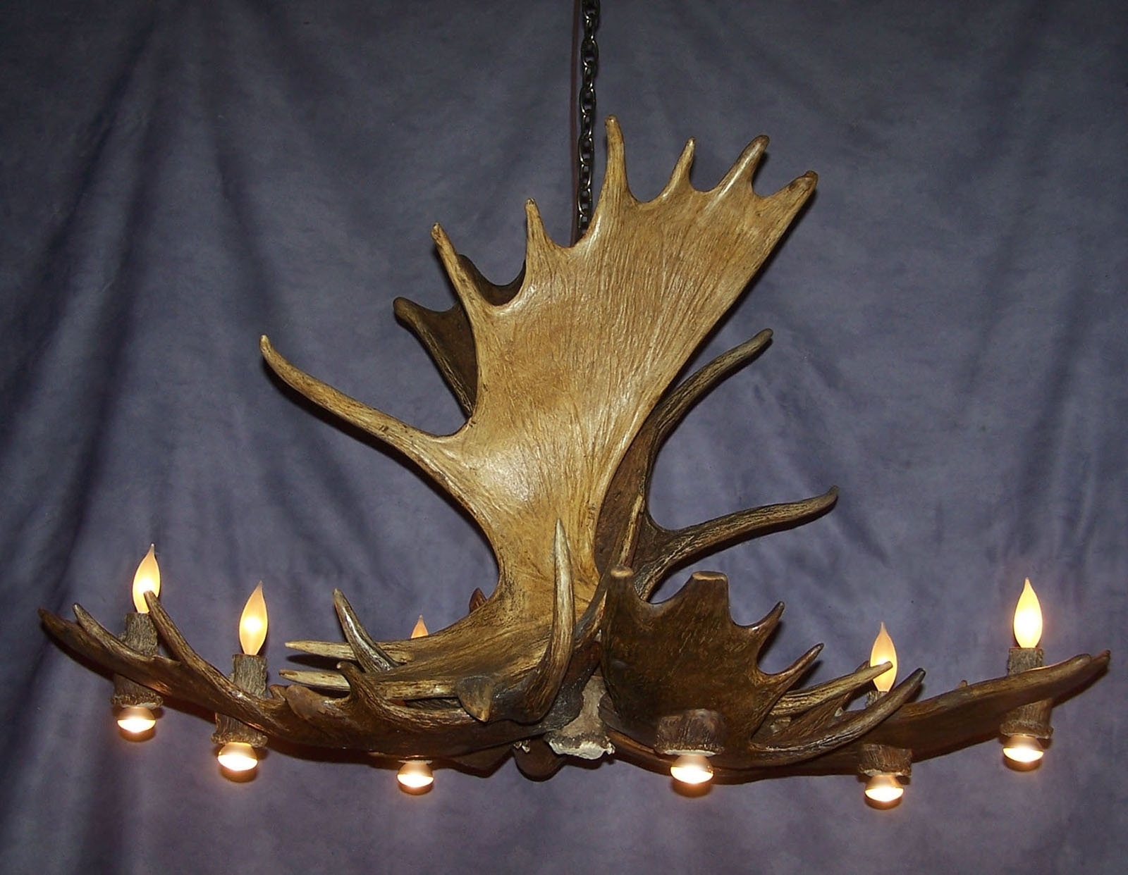 Well Known Antler Chandelier For Moose Pool Table Antler Chandelier, Rustic Deer Lodge Light, Lamps (View 19 of 20)