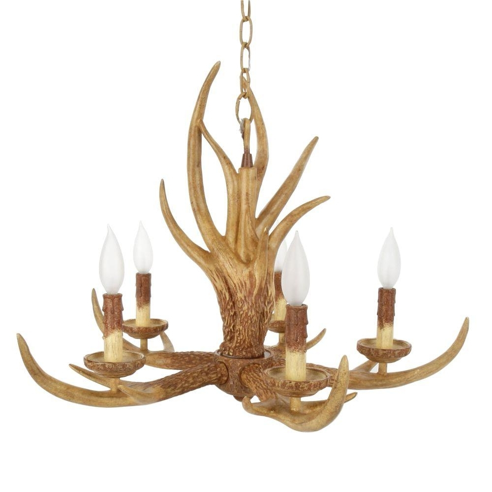 Well Known Antler Chandeliers And Lighting Inside Hampton Bay 5 Light Natural Antler Hanging Chandelier 17195 – The (View 9 of 20)