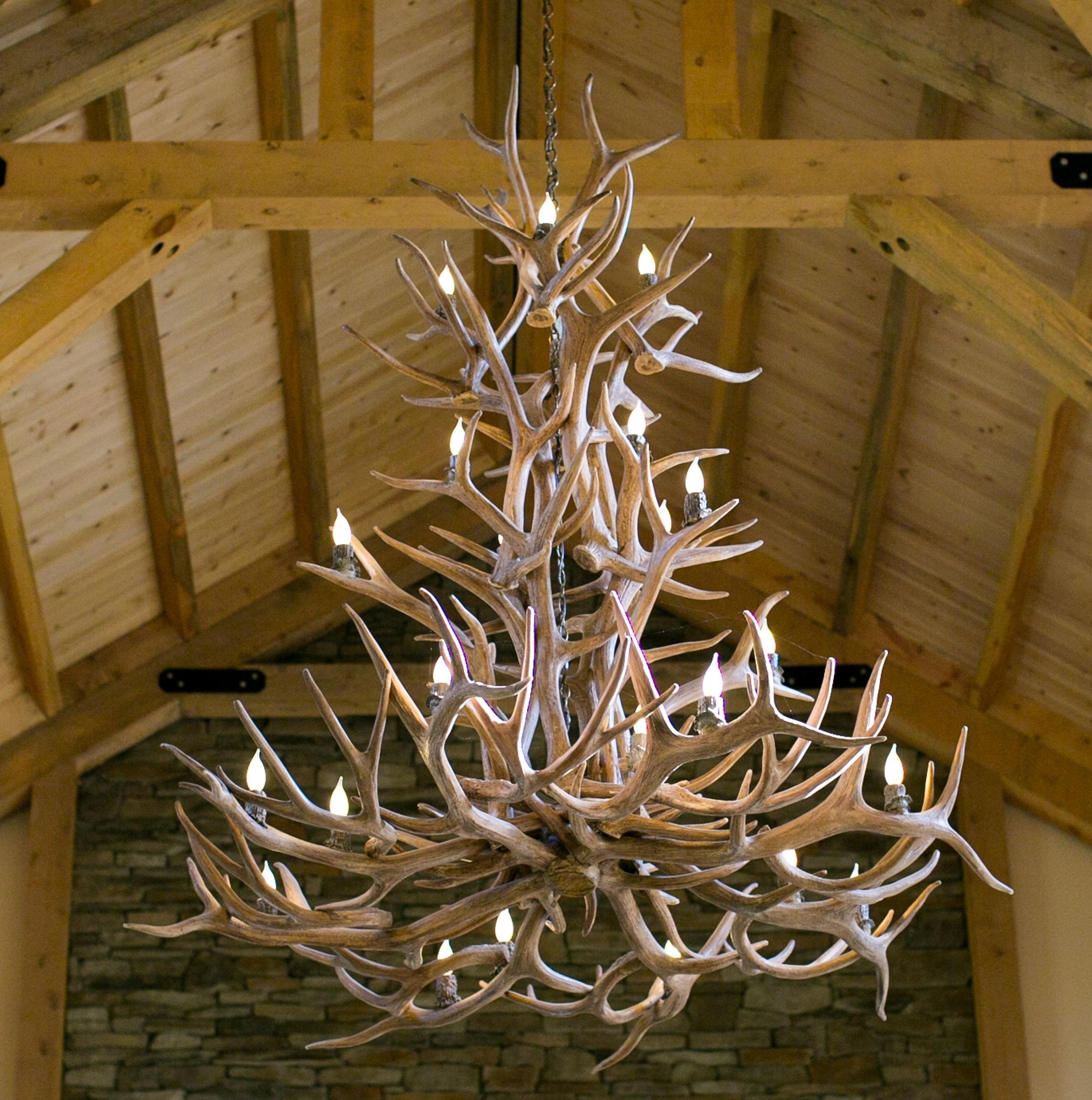 Well Liked Large Antler Chandelier In Chandeliers Design : Marvelous Elk Antler Chandelier Deer Light (View 5 of 20)