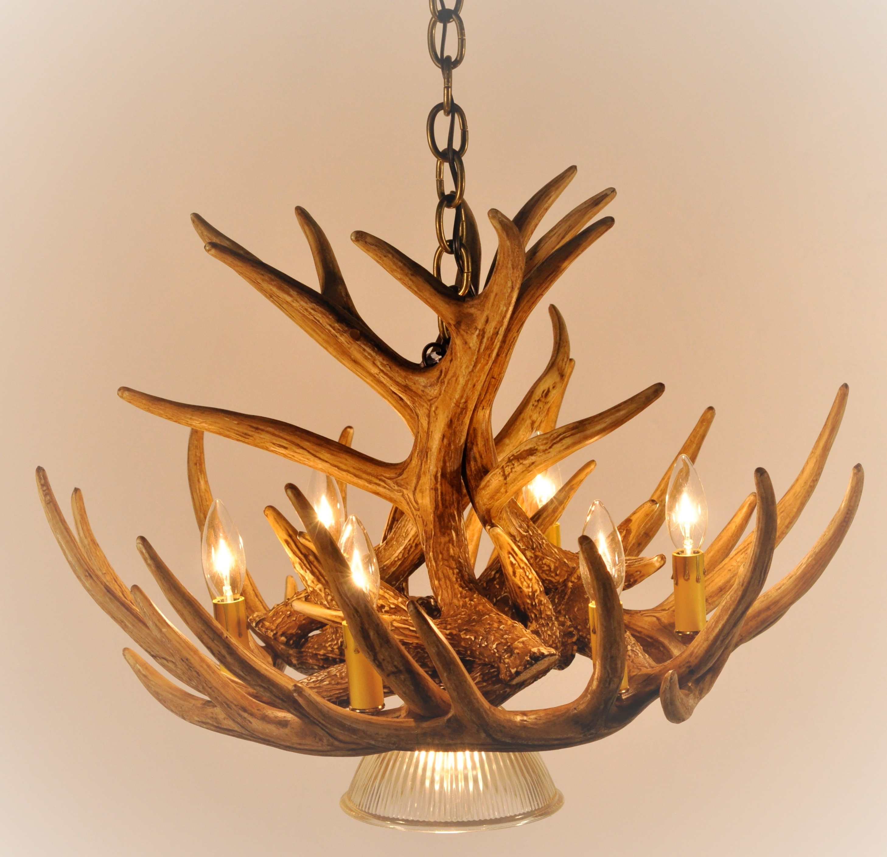 Whitetail Deer 9 Antler Cascade Chandelier With 1 Downlight* – Cast Pertaining To Newest Antlers Chandeliers (View 3 of 20)