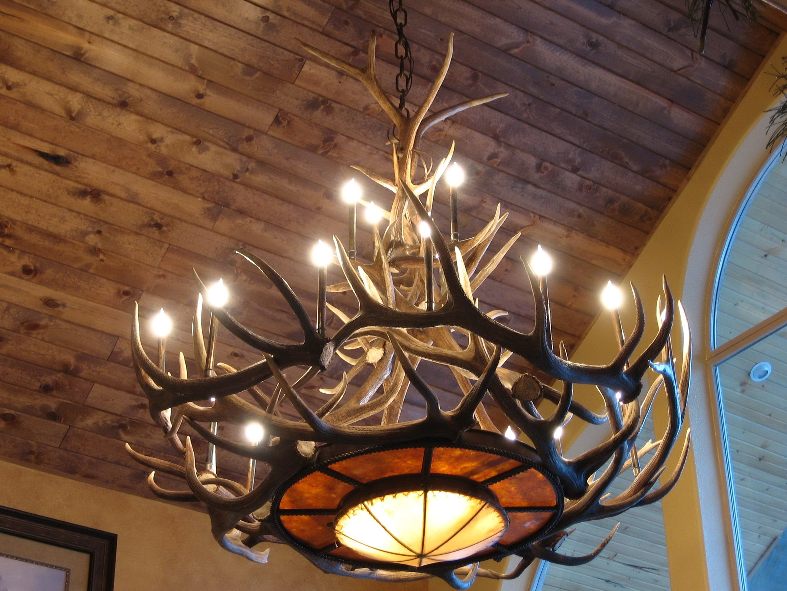 Widely Used Light : Chandelier Antler Chandeliers For Sale Picture Ceiling Faux Inside Large Antler Chandelier (View 20 of 20)