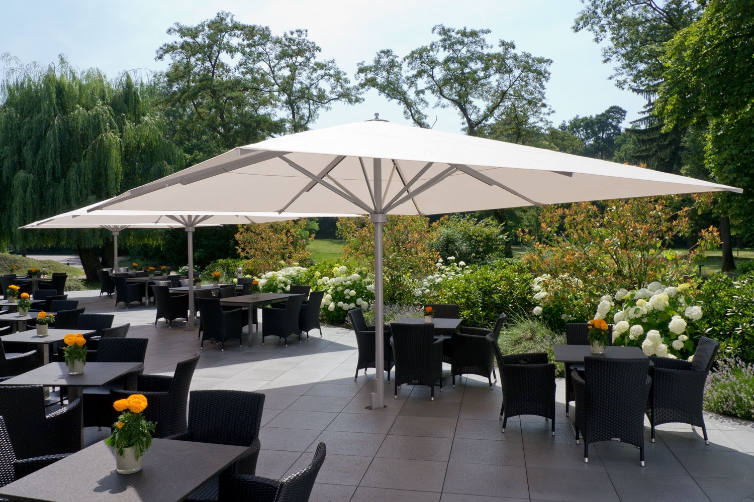Current European Patio Umbrellas Within Caravita – Exclusive Commercial Patio Umbrellas (View 17 of 20)