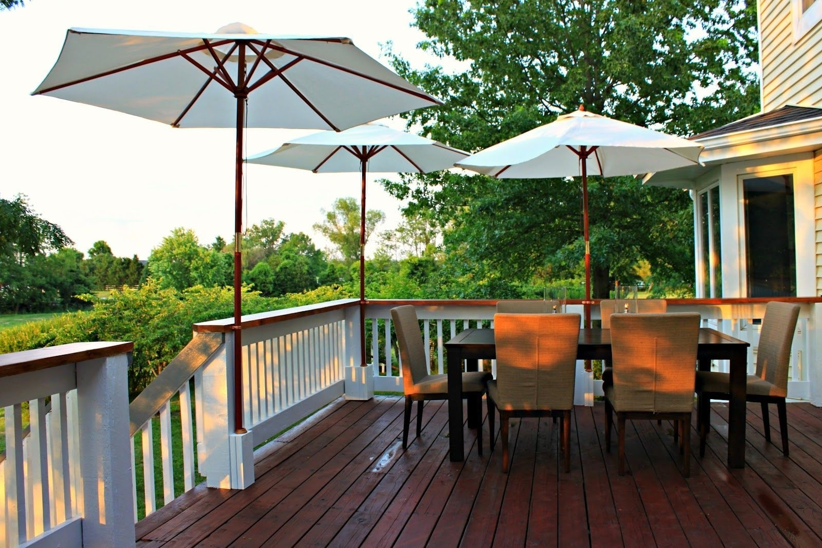 Garden Intended For Trendy Extended Patio Umbrellas (Gallery 15 of 20)