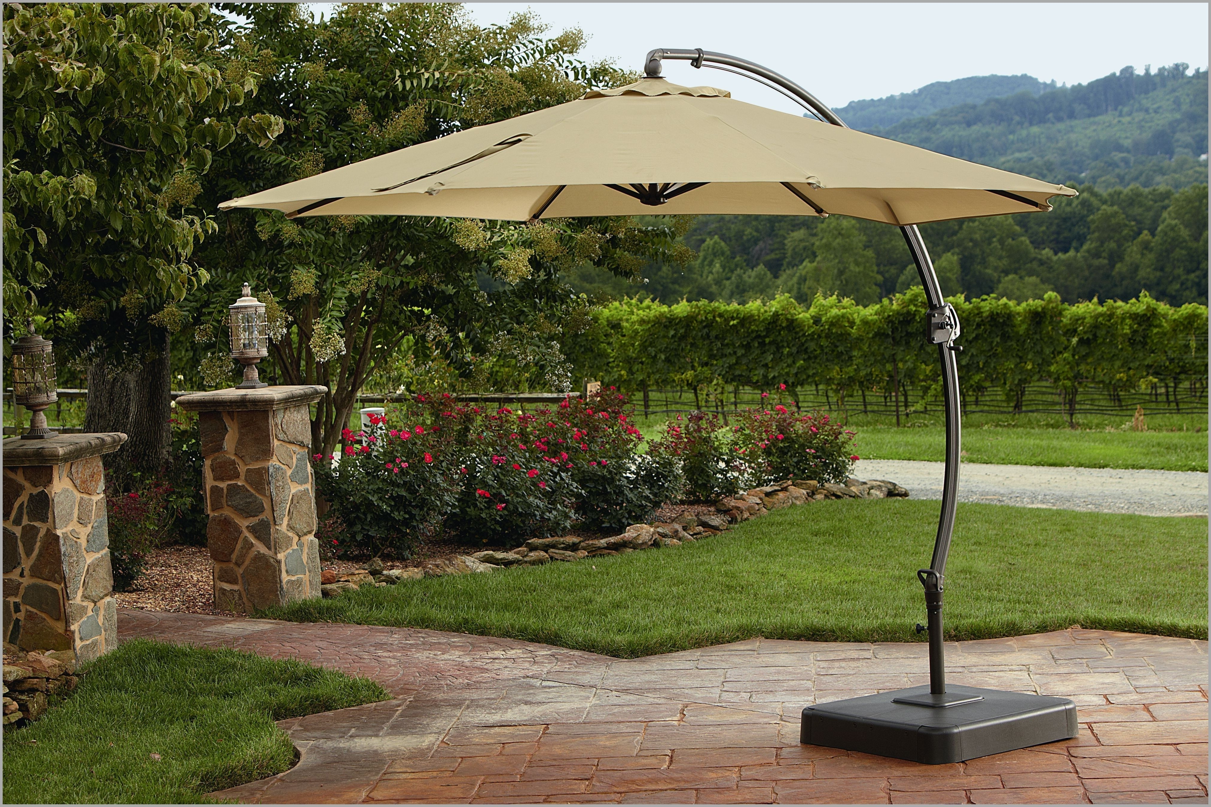 Offset Rectangular Patio Umbrellas Throughout Most Popular Decent Patio Umbrellas Clearance Fset Rectangular Lowes Chairs (View 6 of 20)