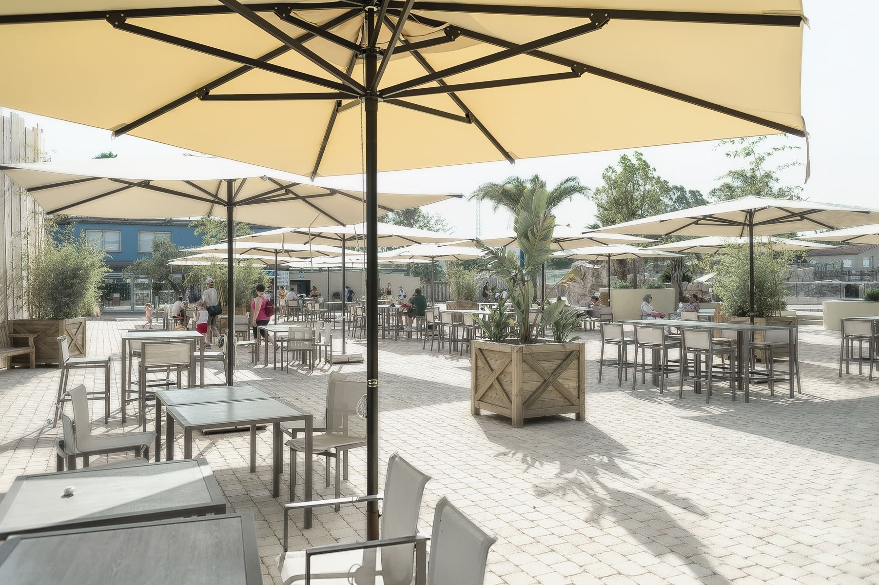 Widely Used Outdoor Patio Umbrellas Inside The 3 Most Important Things To Know Before You Purchase An Outdoor (View 11 of 20)