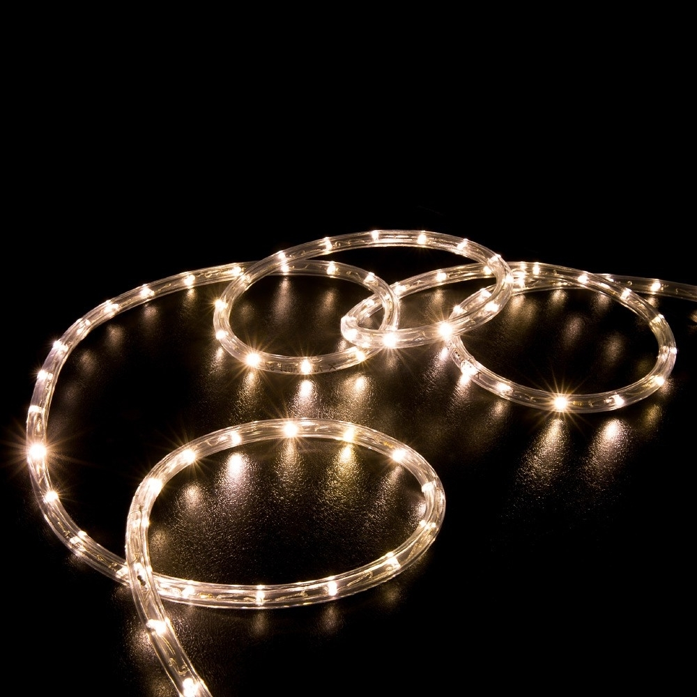 2018 100' Warm White Led Rope Light – Home Outdoor Christmas Lighting Pertaining To Outdoor Christmas Rope Lanterns (View 2 of 20)