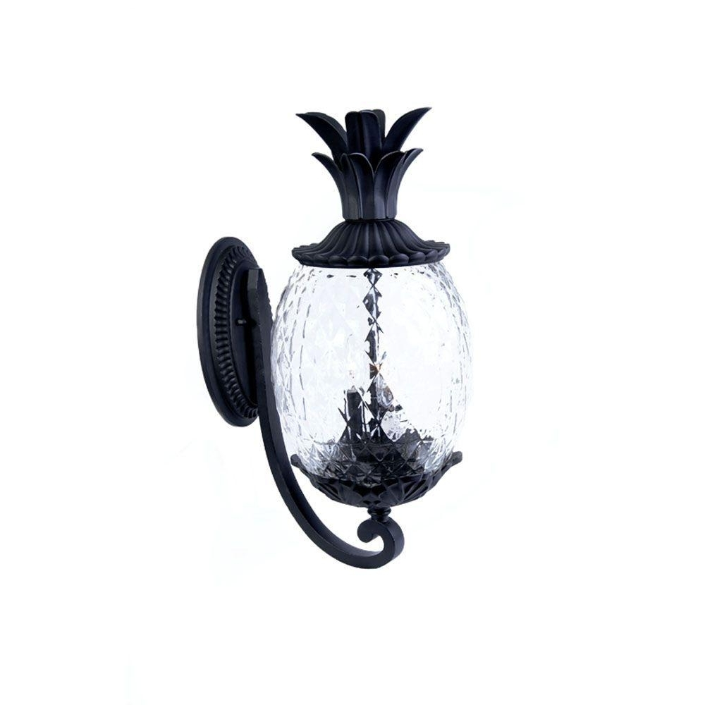 Acclaim Lighting Lanai Collection 2 Light Matte Black Outdoor Wall For Preferred Outdoor Pineapple Lanterns (View 6 of 20)