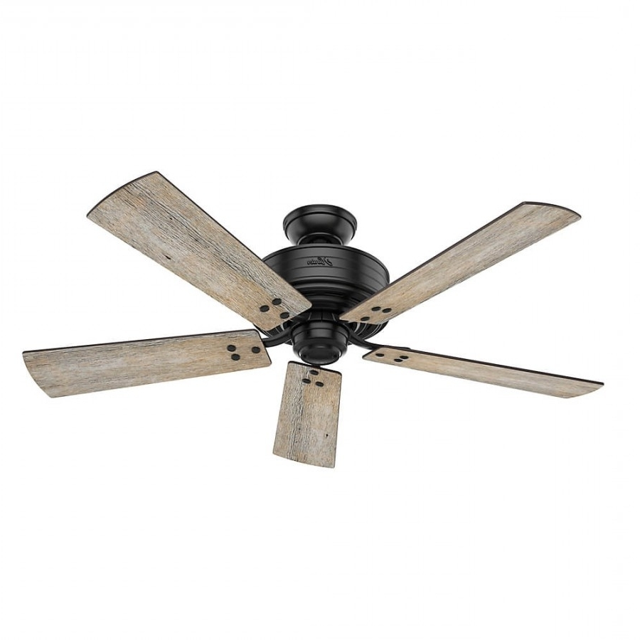 Black Outdoor Ceiling Fans With Light In Popular Hunter 55078 Cedar Key 1 Led Light 52 Inch Outdoor Ceiling Fan In (View 18 of 20)