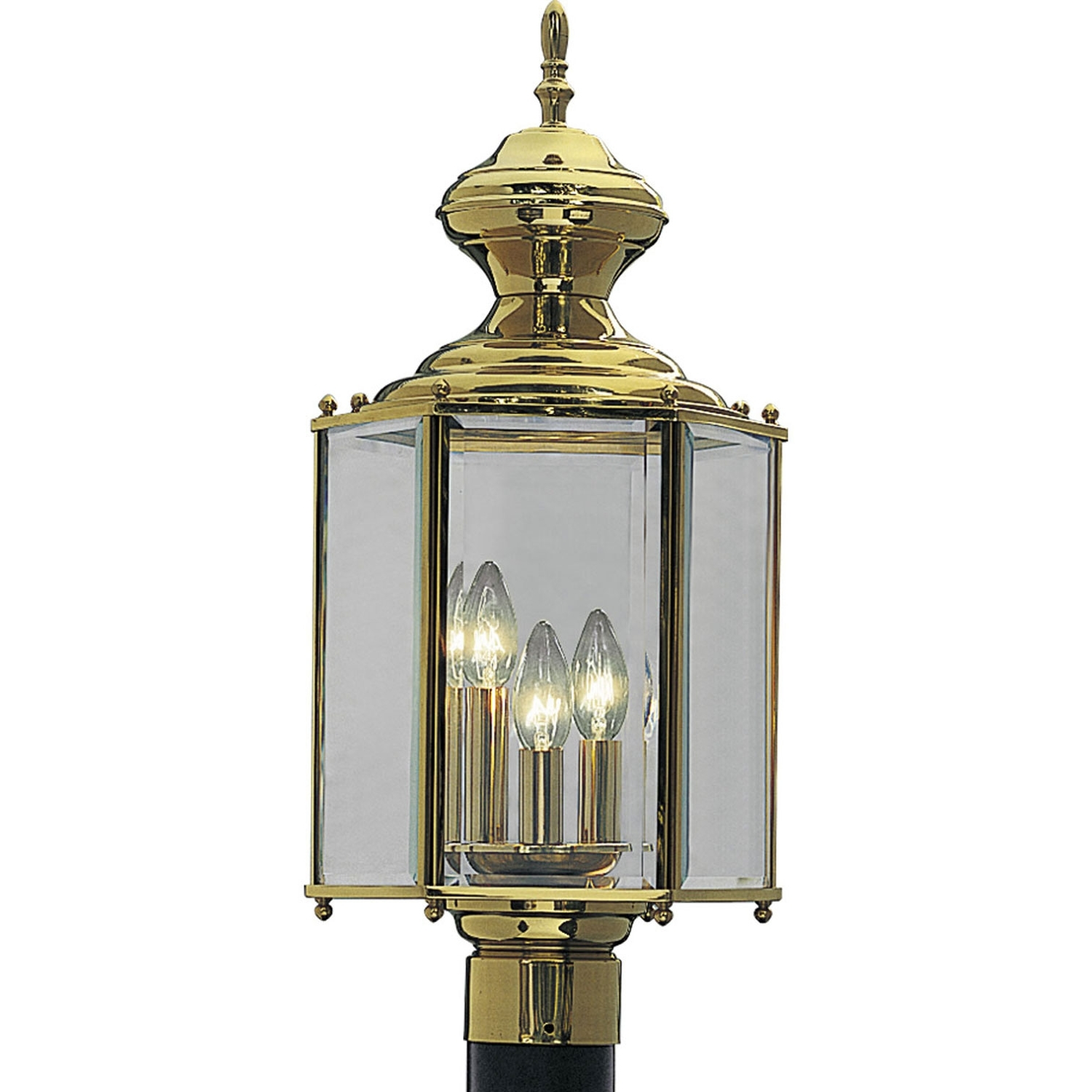 Brass Outdoor Lanterns With Regard To Best And Newest Progress Lighting P5432 10: Brassguard Lanterns Polished Brass Three (View 7 of 20)