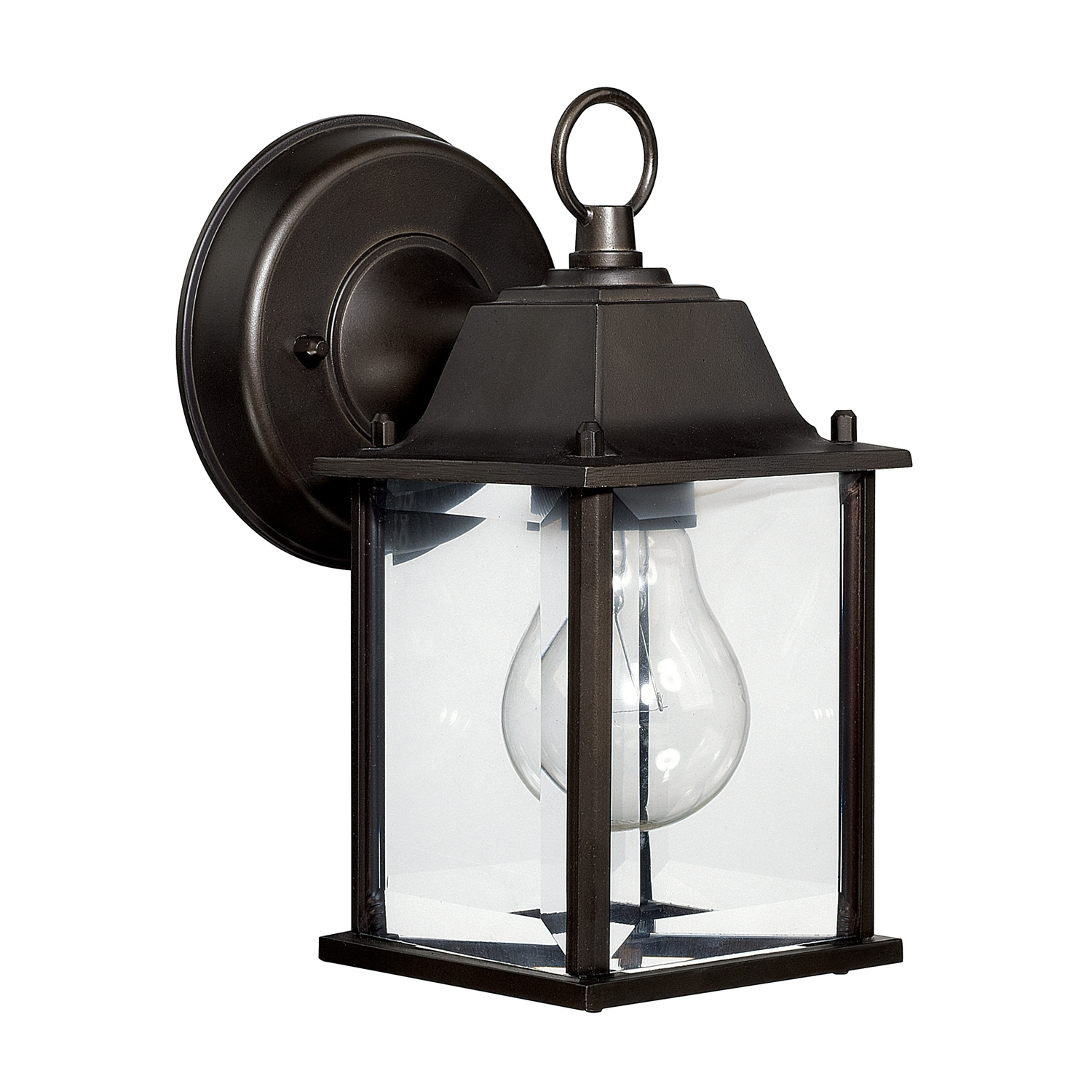 Capital Lighting Fixture Company For Outdoor Lanterns With Led Lights (View 2 of 20)