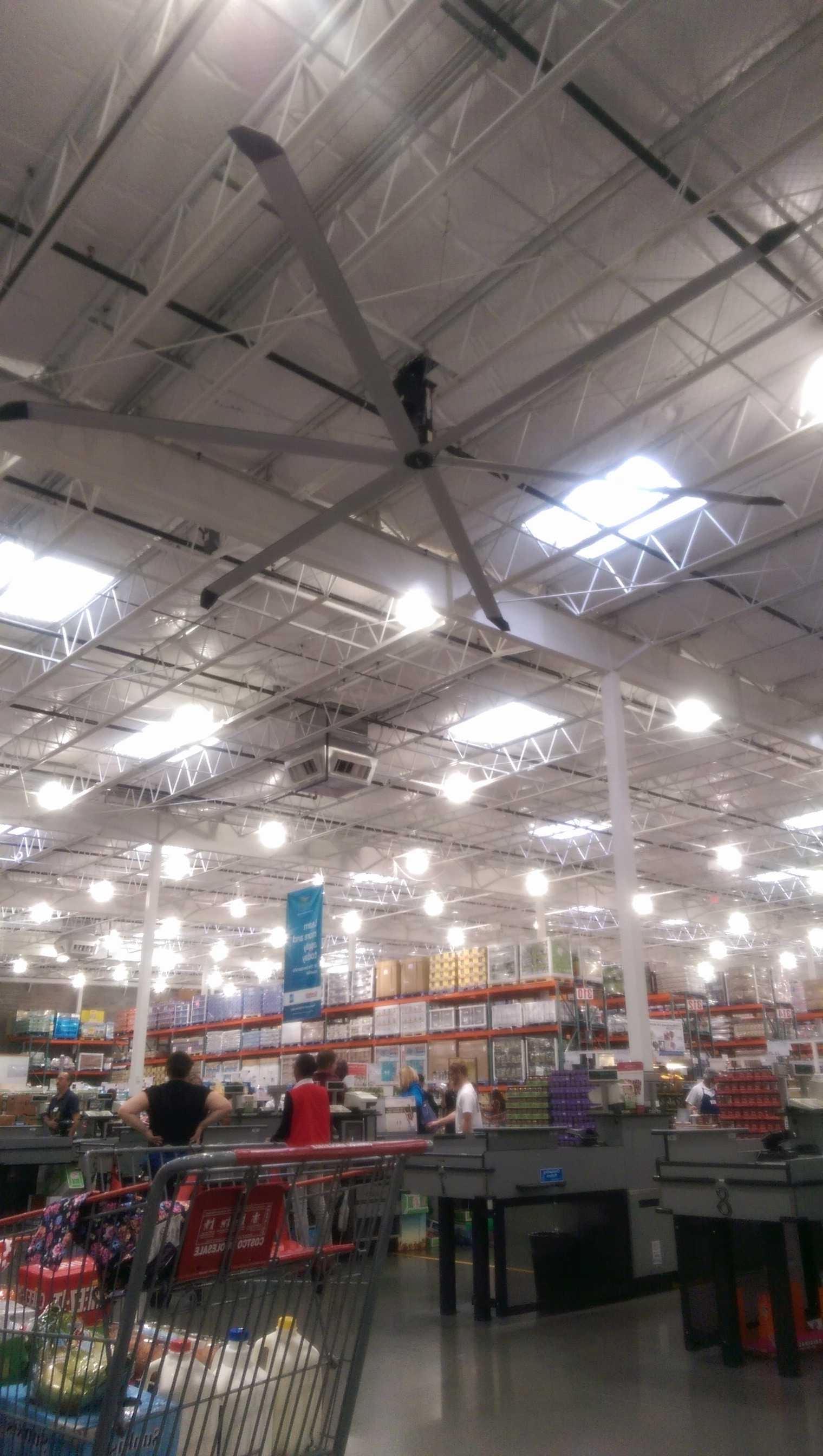 Ceiling Fans At Costco – Pranksenders Regarding Famous Outdoor Ceiling Fans At Costco (View 16 of 20)