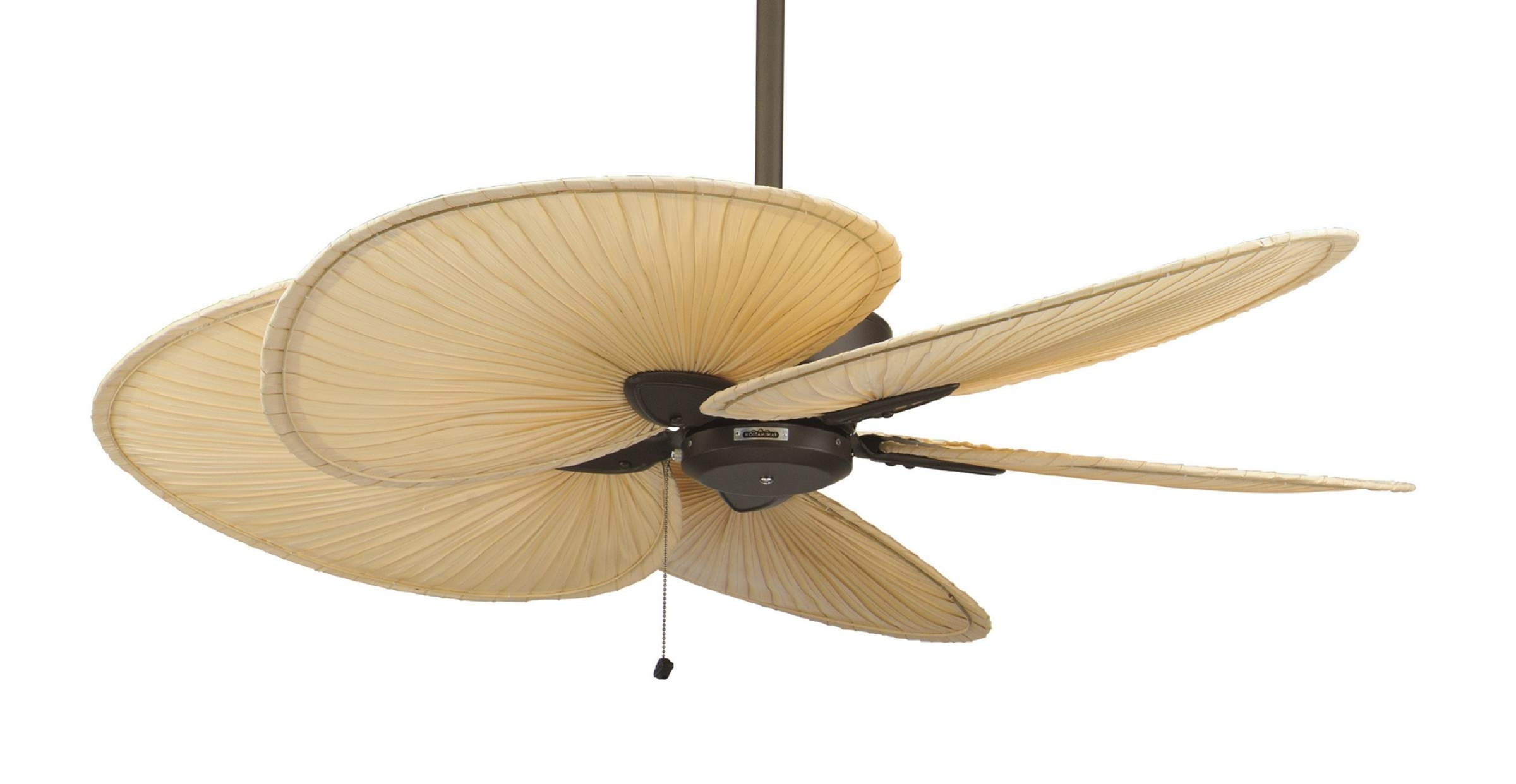 Ceiling Fans With Palm Blades – Photos House Interior And Fan For Famous Outdoor Ceiling Fans With Palm Blades (View 5 of 20)