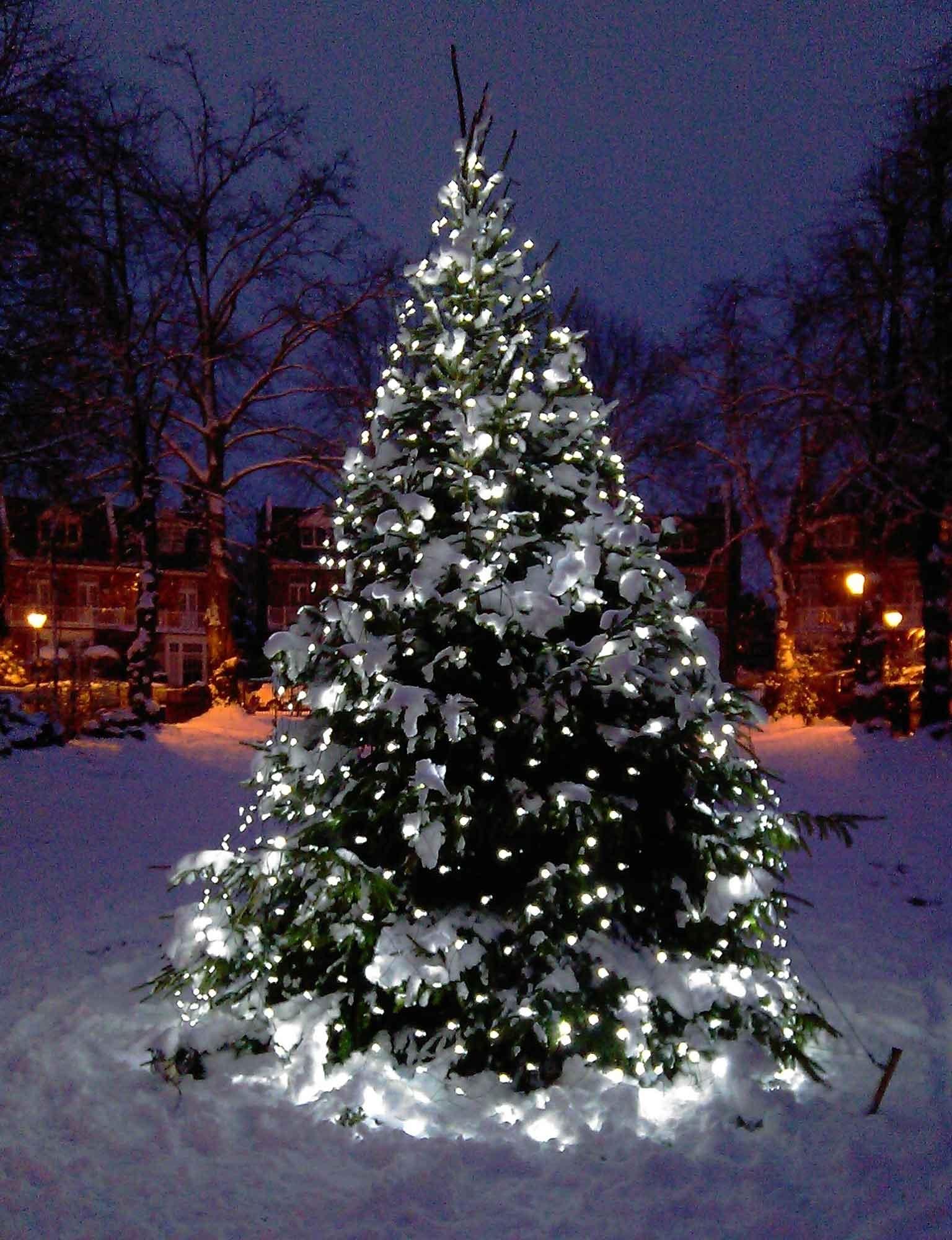 Christmas Tree Light Ideas (View 4 of 20)