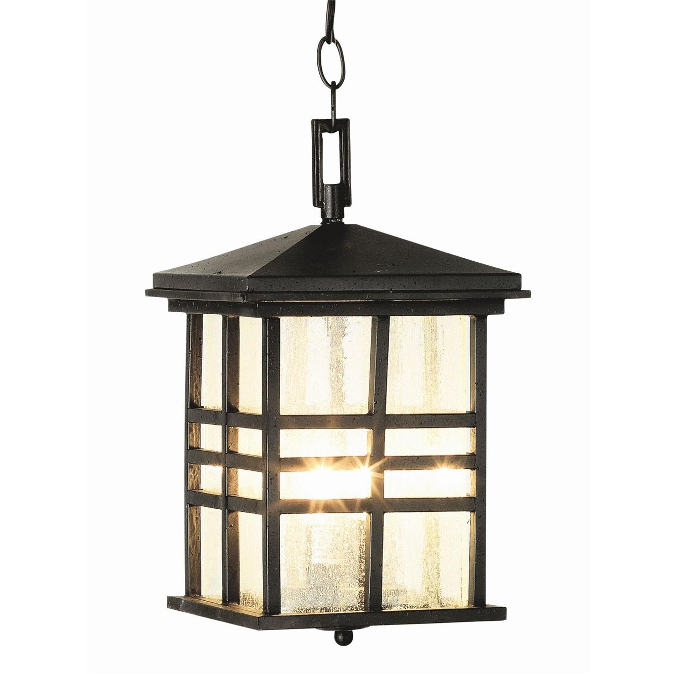 Current Rustic Craftsman Outdoor Hanging Lanterntrans Globe (View 7 of 20)
