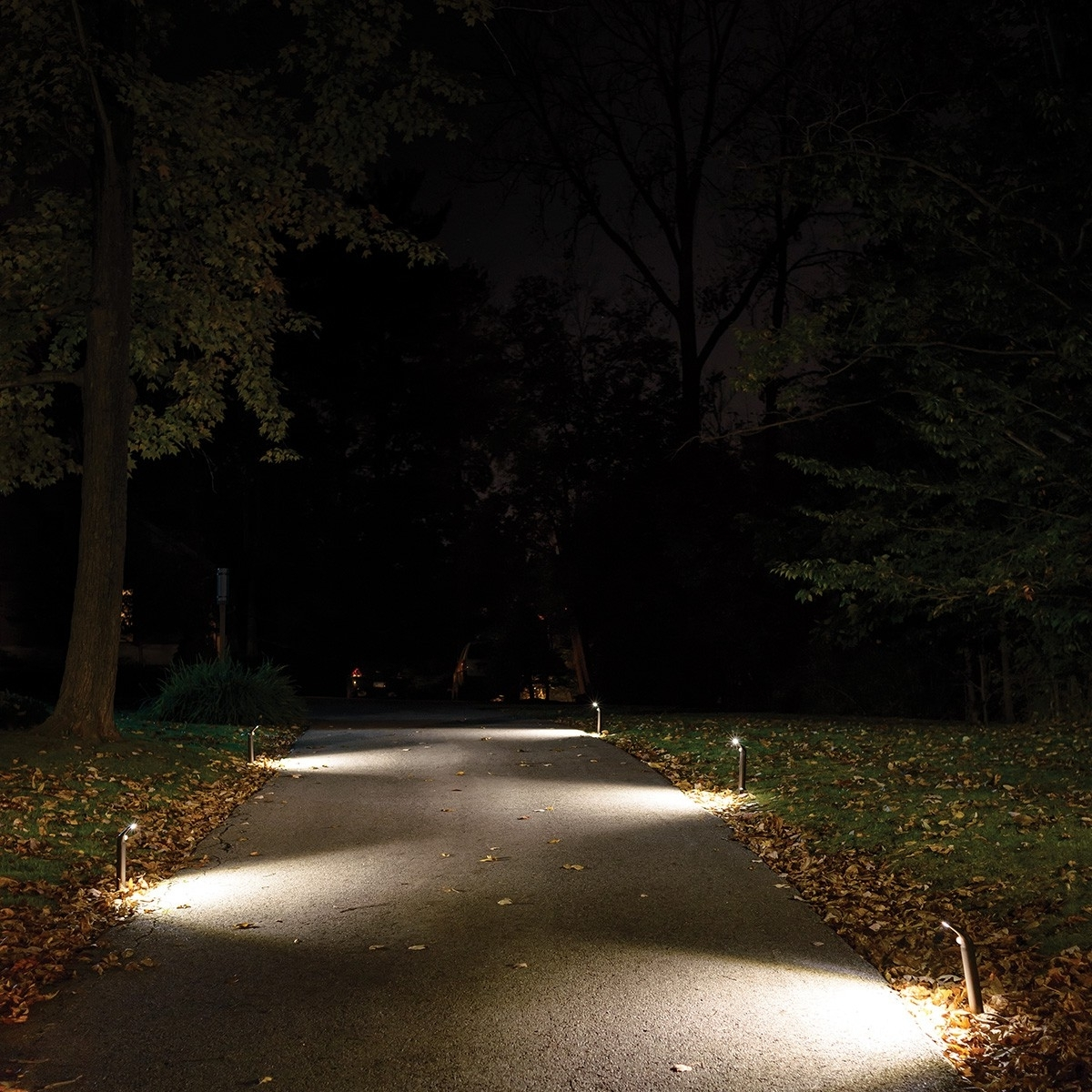 Driveway Lights Great Outdoor Lighting Designed Installed Enjoy Post With Regard To Trendy Outdoor Driveway Lanterns (View 2 of 20)