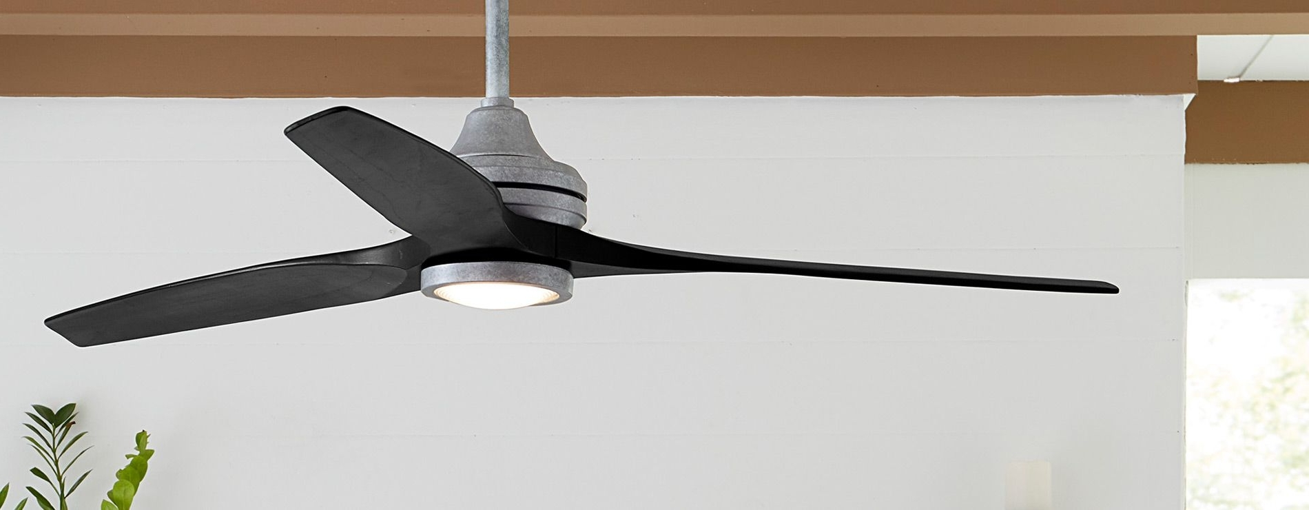 Fanimation :: Home Inside Best And Newest Tropical Design Outdoor Ceiling Fans (View 4 of 20)