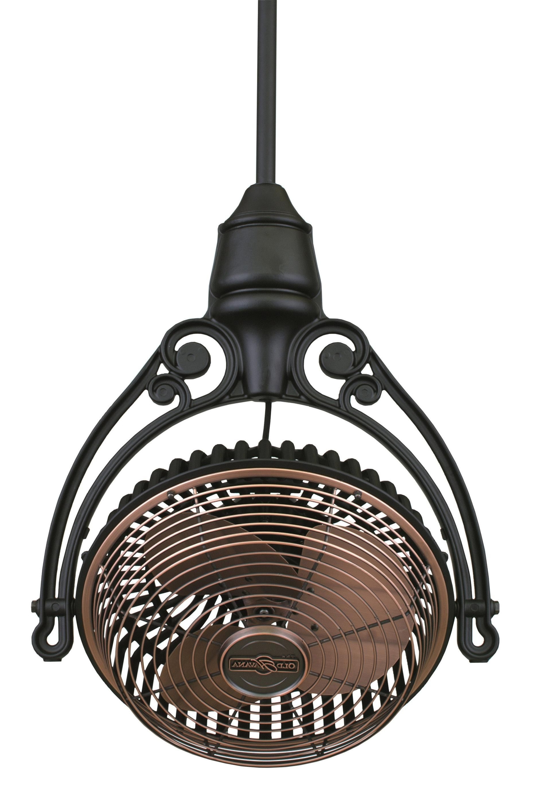 Fanimation Old Havana Ceiling Mount Ceiling Fan Fph210Ac Fph81Bl In In Most Current Outdoor Caged Ceiling Fans With Light (View 5 of 20)
