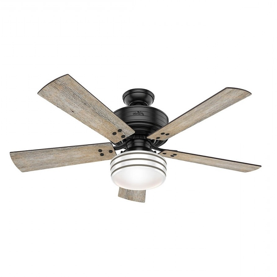 Grey Outdoor Ceiling Fans Throughout Preferred Hunter 55078 Cedar Key 1 Led Light 52 Inch Outdoor Ceiling Fan In (Gallery 18 of 20)