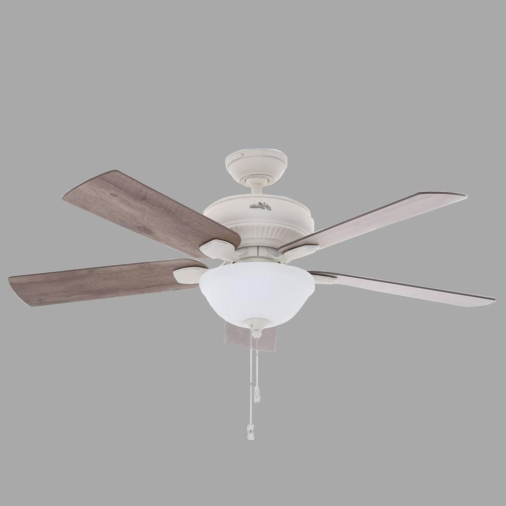Http://onlinecompliance Intended For Hunter Indoor Outdoor Ceiling Fans With Lights (Gallery 16 of 20)