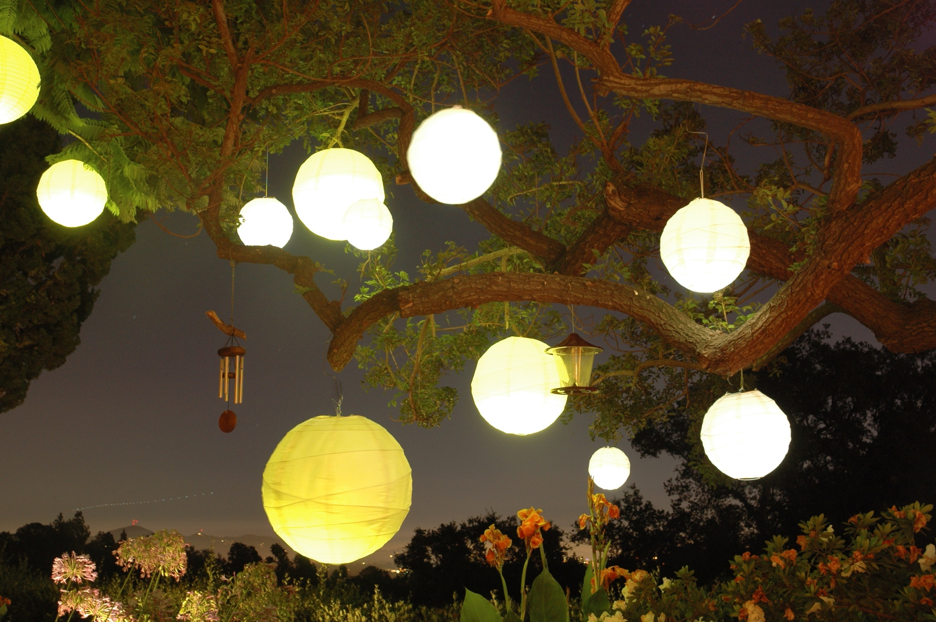 Images Of Paper Lanterns Hanging From Trees – #spacehero In Most Recent Outdoor Hanging Lanterns For Trees (View 20 of 20)