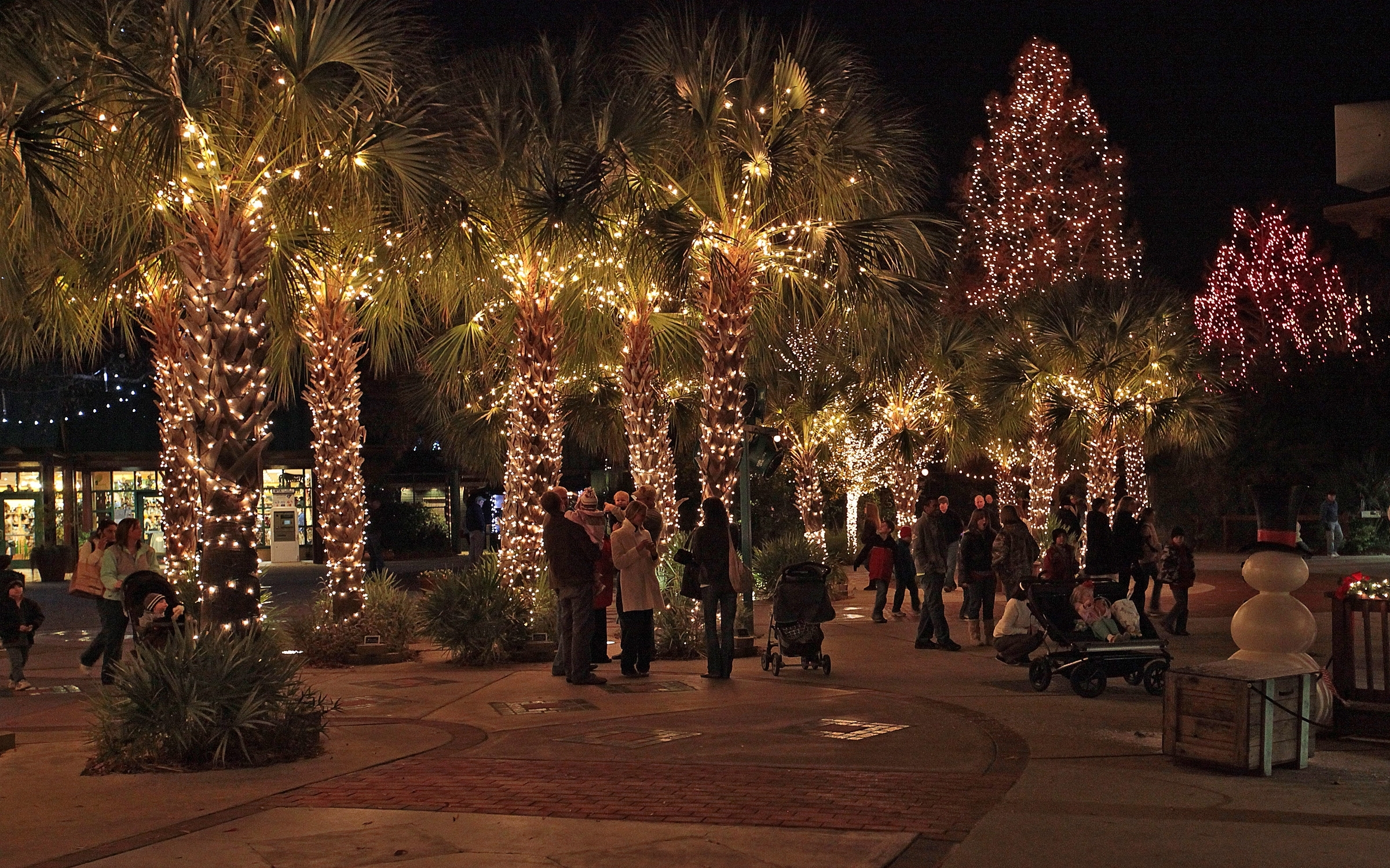Latest Outdoor Solar Decorations String Lighting On Palm Trees In With Outdoor Lanterns For Christmas (View 12 of 20)