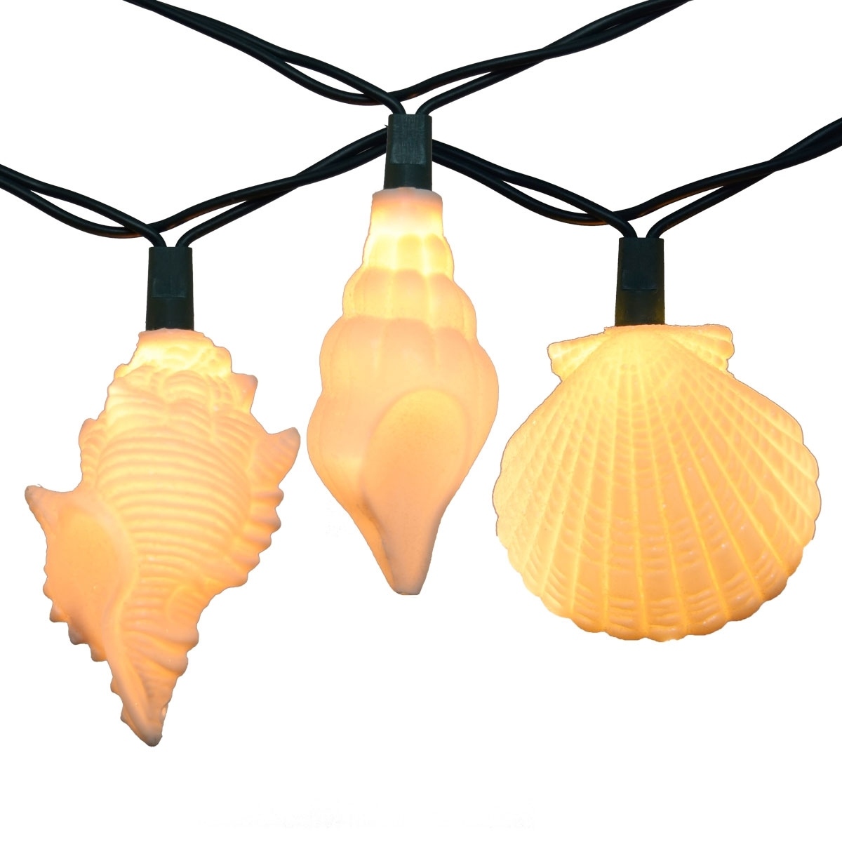 Latest Sea Shells Party String Lights – 10 Lights With Regard To Outdoor Tropical Lanterns (View 11 of 20)