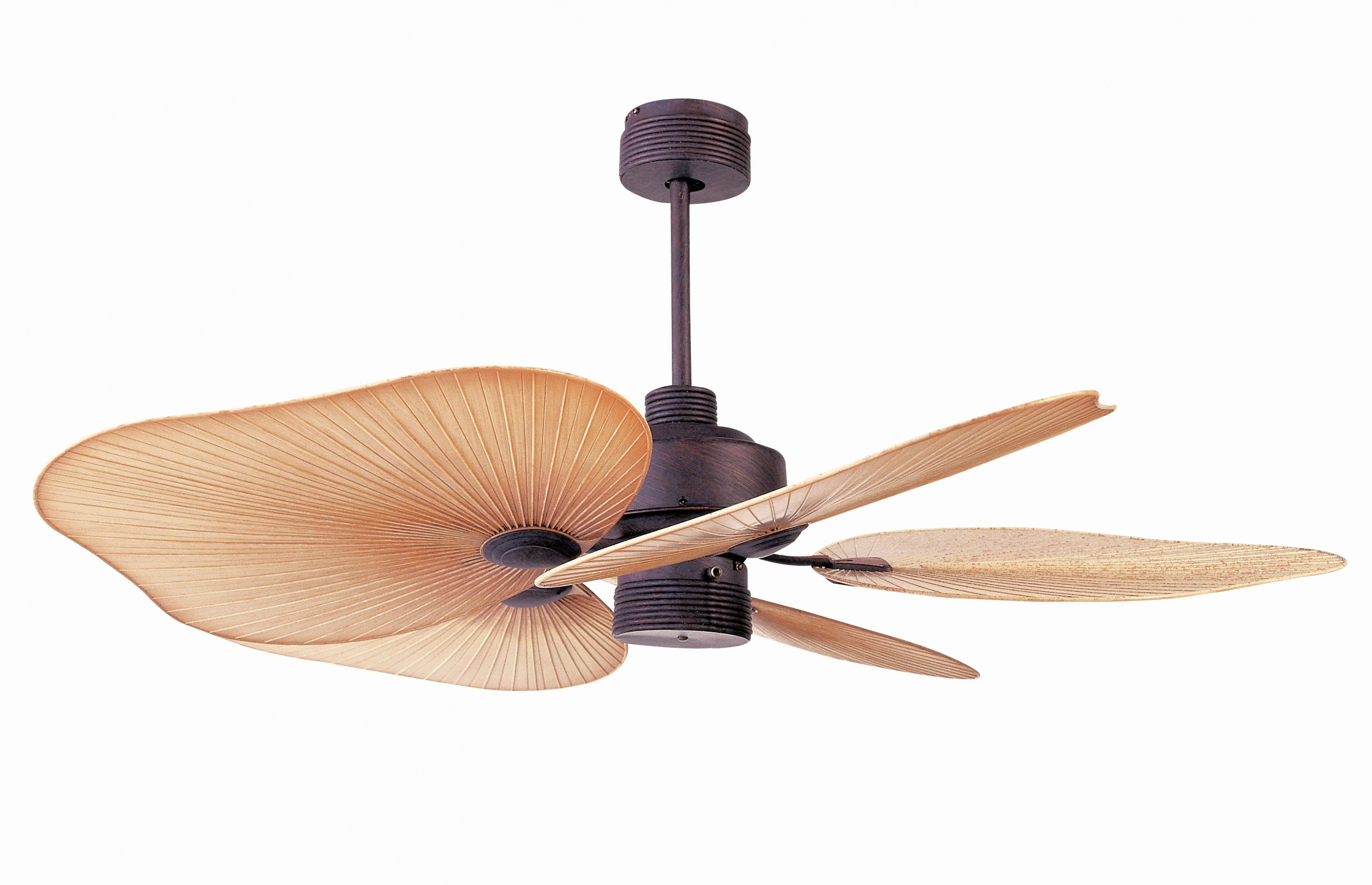 Most Current Balancing A Ceiling Fan Fresh Tropical Ceiling Fans Ideas In Tropical Outdoor Ceiling Fans (View 16 of 20)