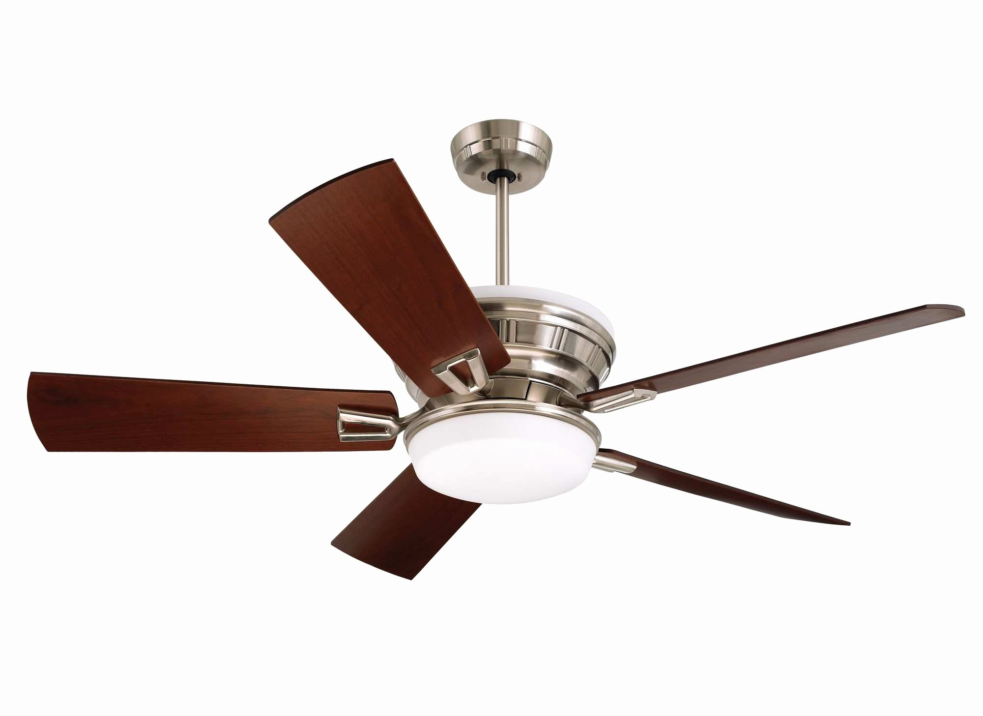 Most Recent Best Energy Star Ceiling Fans Luxury Home Depot Outdoor Ceiling Fans Inside Energy Star Outdoor Ceiling Fans With Light (View 8 of 20)