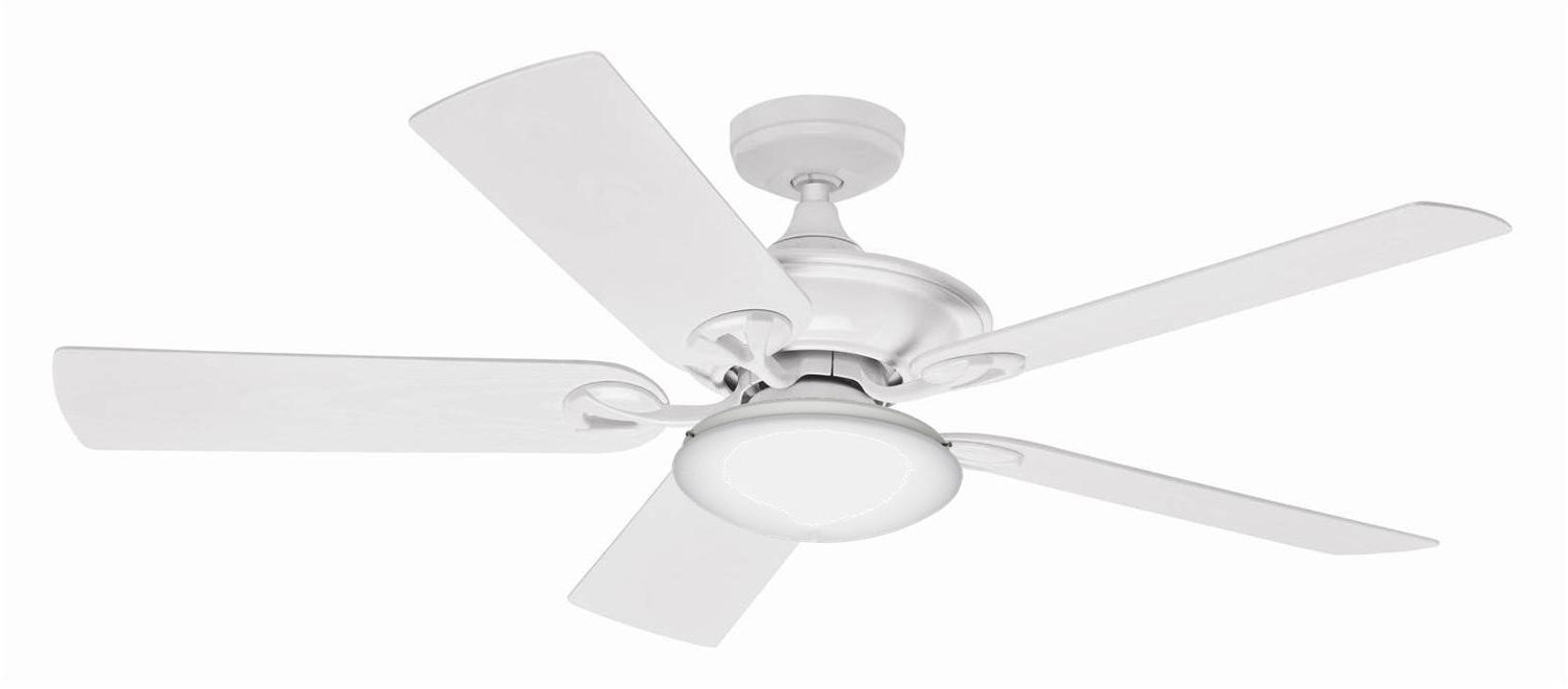 Most Recently Released Maribel – Hunter Fans Australia Intended For Harvey Norman Outdoor Ceiling Fans (View 19 of 20)