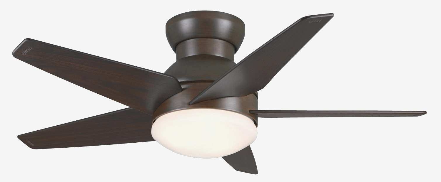 Outdoor Ceiling Fans At Costco Intended For Recent Costco Outdoor Ceiling Fans Incredible Basic 20 Ceiling Fans At (View 11 of 20)