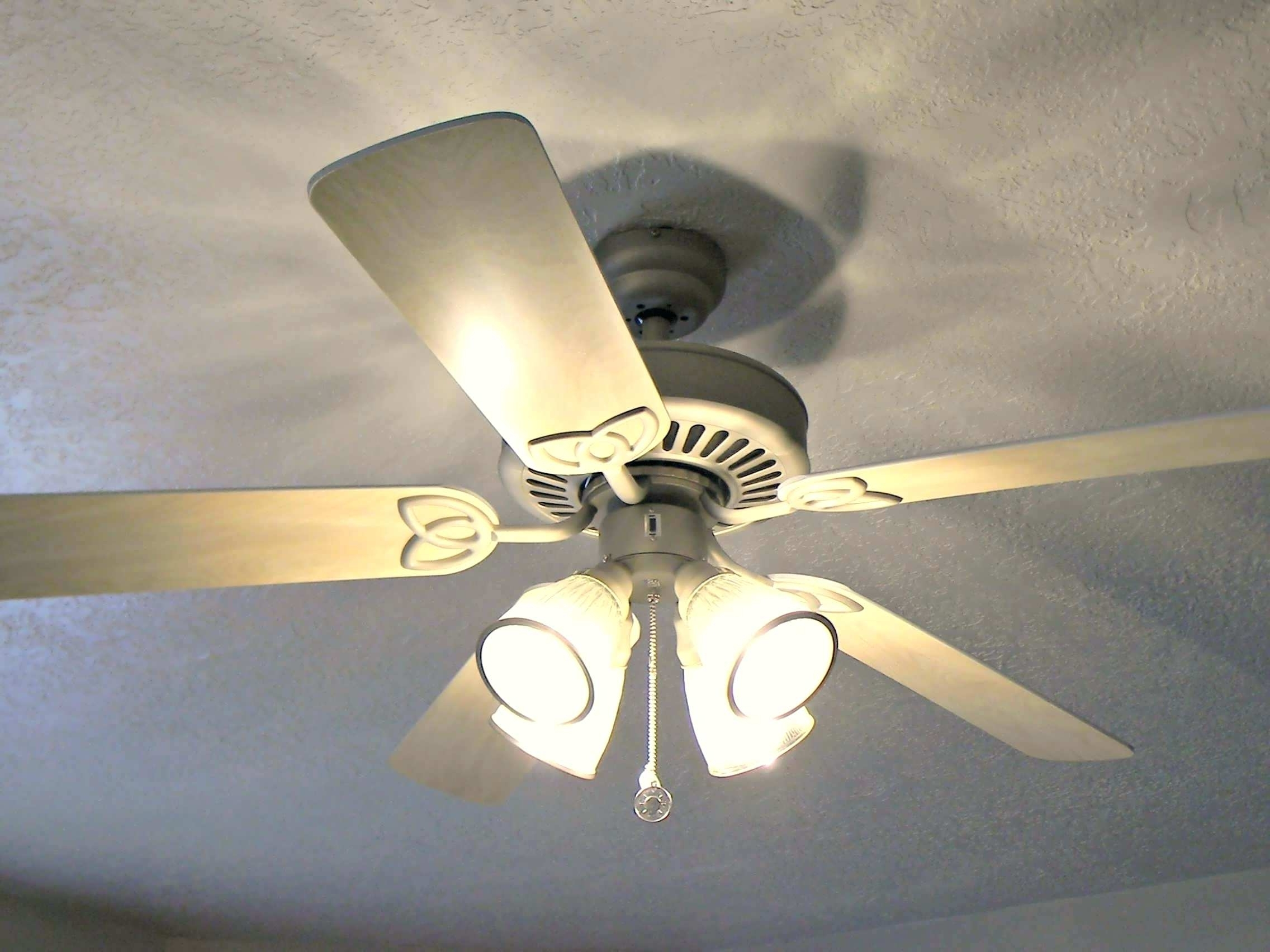 Outdoor Ceiling Fans At Menards For Well Known Light: Variety Of Styles To Complement Your Home Decor With Menards (View 8 of 20)