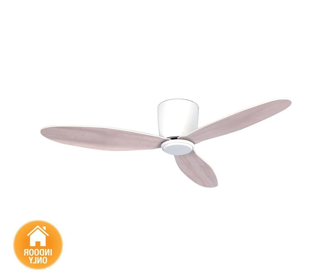 Outdoor Ceiling Fans With Dc Motors Intended For Newest Energy Saving Ceiling Fan – For Low Ceilings, Casa Bruno – Ceiling (View 12 of 20)